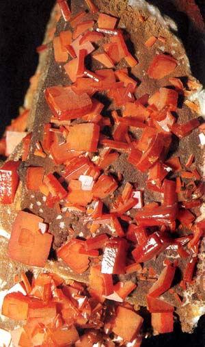 Среди чудес, которые встречаются в природе, именно мир минералов отличается наиболее захватывающим и гармоничным...